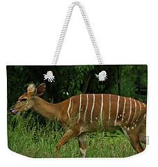 Striped Gazelle Weekender Tote Bag