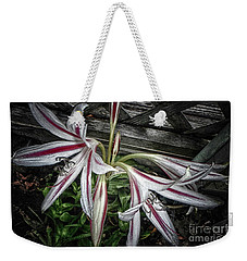 Weekender Tote Bag featuring the photograph Striped Lilies by Judy Hall-Folde