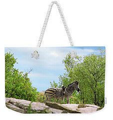 Mama, Who's That Idiot Taking My Picture? Weekender Tote Bag