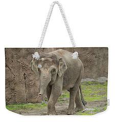 Strolling Elephant Weekender Tote Bag by Loriannah Hespe