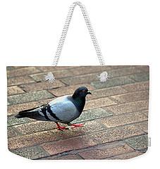 Strutting Pigeon Weekender Tote Bag