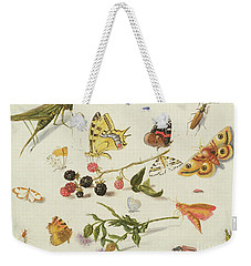 Study Of Insects, Flowers And Fruits, 17th Century Weekender Tote Bag