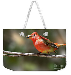Stuffed Summer Tanager Weekender Tote Bag