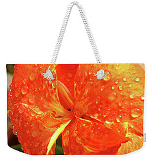 Weekender Tote Bag featuring the photograph Stunning Canna Lily by Karen Nicholson