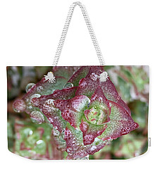 Succulent Abstract Weekender Tote Bag by Russell Keating