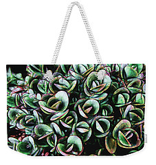 Weekender Tote Bag featuring the photograph Succulent Fantasy by Ann Powell