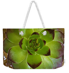 Succulent Weekender Tote Bag by Jim Harris