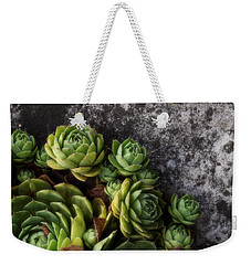 Succulent Weekender Tote Bag by Tom Druin