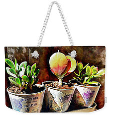 Succulents In A Group Of Three Weekender Tote Bag