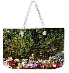 Succulents On A Sunny Garden Wall Weekender Tote Bag