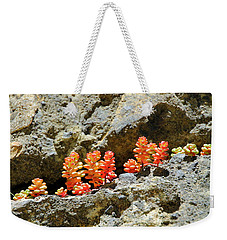 Succulents On The Oregon Coast Weekender Tote Bag