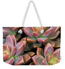 Weekender Tote Bag featuring the photograph Succulents by SR Green