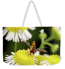 Weekender Tote Bag featuring the photograph Sugar Bee Wings by Meta Gatschenberger