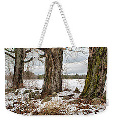 Sugar Maples  Weekender Tote Bag