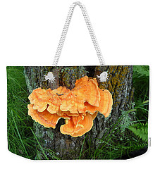 Sulfur Shelf Fungus On A Tree Weekender Tote Bag
