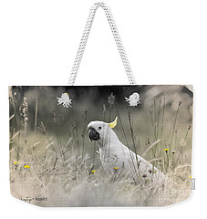 Weekender Tote Bag featuring the photograph Sulphur Crested Cockatoo by Chris Armytage