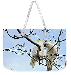 Sulphur Crested Cockatoos Weekender Tote Bag by Kaye Menner