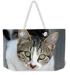 Weekender Tote Bag featuring the photograph Suma by Munir Alawi