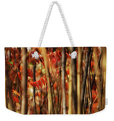 Sumac Abstract Weekender Tote Bag by Jimmy Ostgard