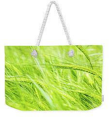 Weekender Tote Bag featuring the photograph Summer Barley. by Gary Gillette