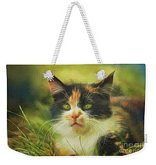 Weekender Tote Bag featuring the photograph Summer Cat by Jutta Maria Pusl