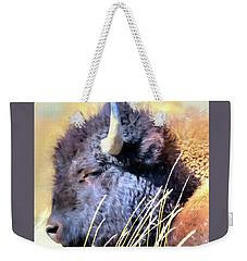 Summer Dozing - Buffalo Weekender Tote Bag