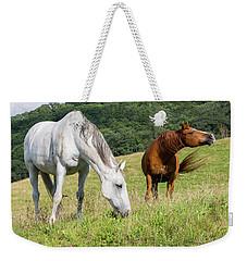 Summer Evening For Horses Weekender Tote Bag