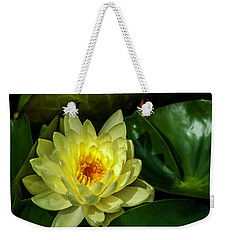 Summer Gold Weekender Tote Bag by Ken Frischkorn