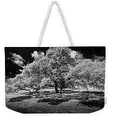 Weekender Tote Bag featuring the photograph A Summer's Night by Darryl Dalton