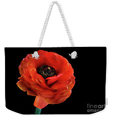 Weekender Tote Bag featuring the photograph Summer Orange by Darren Fisher