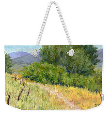 Weekender Tote Bag featuring the painting Summer Stroll by David King