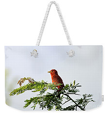 Weekender Tote Bag featuring the photograph Summer Tanager In Mesquite Scrub by Robert Frederick