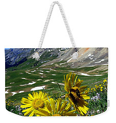 Weekender Tote Bag featuring the photograph Summer Tundra by Karen Shackles