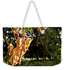 Weekender Tote Bag featuring the photograph Summer's Toll by Robert Knight