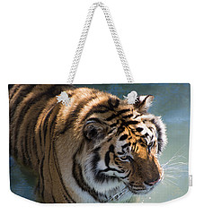 Weekender Tote Bag featuring the photograph Summertime Wading by Colleen Coccia