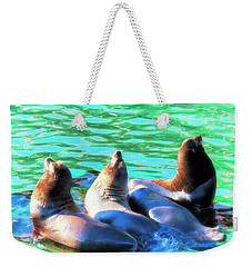Sun Basking Seals Weekender Tote Bag