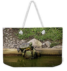 Weekender Tote Bag featuring the photograph Sun Bathing by Melissa Messick