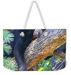 Sun  Bear - Afternoon Nap Weekender Tote Bag