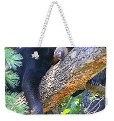 Sun  Bear - Afternoon Nap Weekender Tote Bag