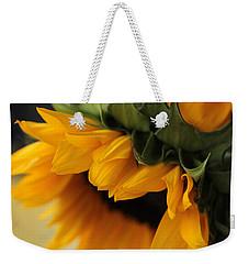 Sun Dozing  Weekender Tote Bag
