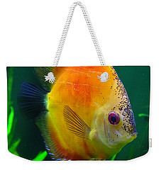 Sun Fish Weekender Tote Bag
