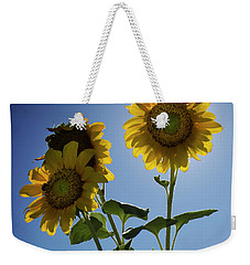 Weekender Tote Bag featuring the photograph Sun Flowers by Brian Jones