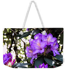Sun Kissed Weekender Tote Bag by Brenda Bostic