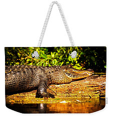 Sun-kissed Weekender Tote Bag