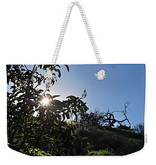Weekender Tote Bag featuring the photograph Sun Shines Through The Greenery by Matt Harang