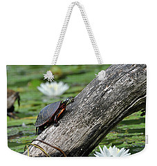 Weekender Tote Bag featuring the photograph Turtle Sunbathing by Glenn Gordon