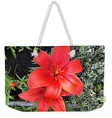 Sunbeam On Red Day Lily Weekender Tote Bag