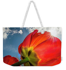Weekender Tote Bag featuring the photograph Sunbeams And Tulips by Adam Romanowicz