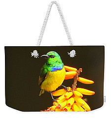 Sunbird Weekender Tote Bag by Betty-Anne McDonald
