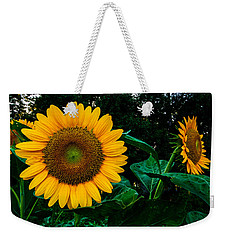 Weekender Tote Bag featuring the photograph Sunday Morning by John Harding